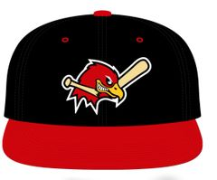 Hawks embroidered baseball hat