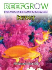 Defense Coral Dip 500ML