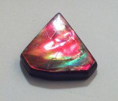 CAM-0003; Ammolite, Canada, Untreated