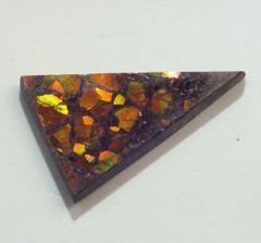 CAM-0008; Ammolite, Canada, Untreated
