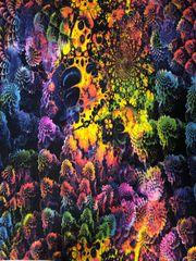 Coral Reef_Funky Leggz