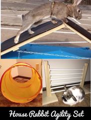 HOUSE RABBIT AGILITY SET