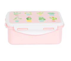 Pastel Cactus Lunch Box