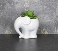 Succulent elephant planter