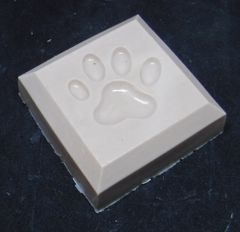 Dog Paw Square