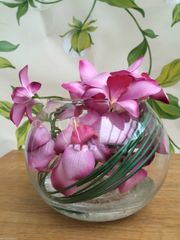 STUNNING PINK ORCHID & BEAR GRASS FLOWER ARRANGEMENT IN GLASS BOWL WITH WATER