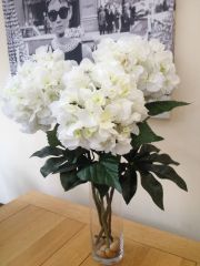 LARGE ARRANGEMENT WHITE HYDRANGEA IN VASE WITH WATER