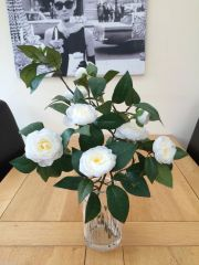 GORGEOUS NATURAL STYLE VASE ARRANGEMENT - WHITE CAMELLIA STEMS SET IN FAUX WATER