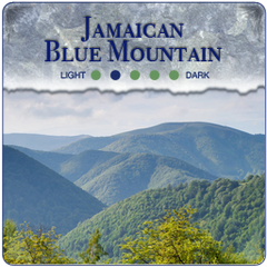 Jamaican Blue Moutain Coffee Blend