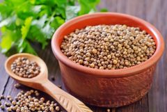 Coriander Seed Whole and Ground
