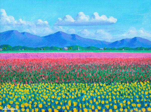 Tulip Fields | 24 x 32 | Canvas Print