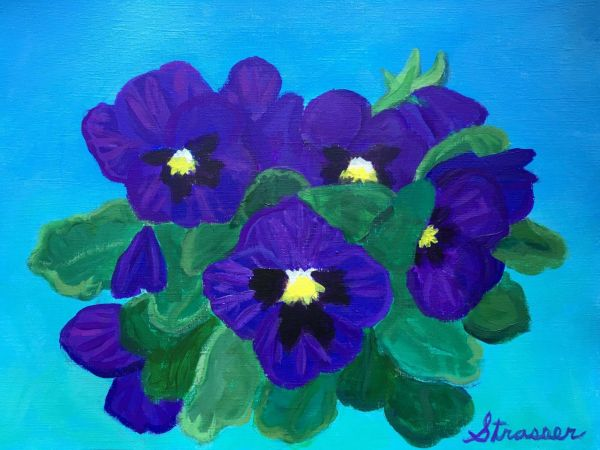 Purples Pansies