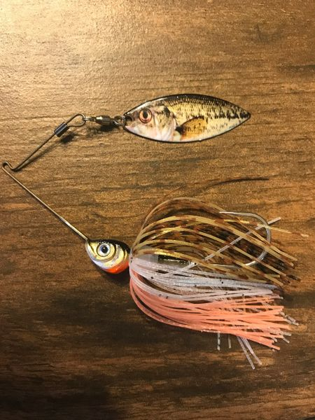 1/4- 1/2oz Golden Shiner Single Trueimage Willowleaf