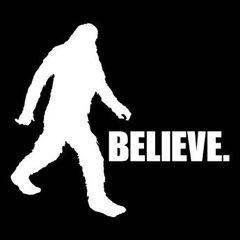 255. Bigfoot T-Shirt