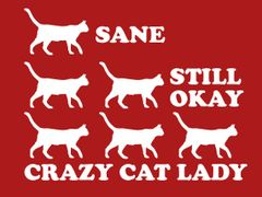 037. Crazy Cat Lady T-Shirt