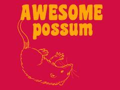 109. Awesome Possum T-Shirt