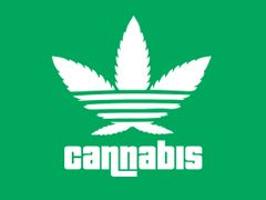 146. Cannabis T-Shirt