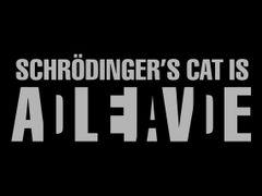 154. Schrodinger's Cat T-Shirt