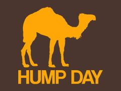 175. Hump Day T-Shirt