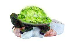 Solar Powered Garden Turtle
