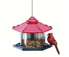 Red Roof Gazebo Bird Feeder