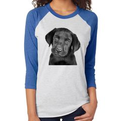 Pet Next Level Unisex Adult Triblend 3/4-Sleeve Raglan