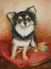 """The Favorite"" ... Long Coat Chihuahua, 5 x 7 Note Cards & Assorted Paper & Canvas Prints"