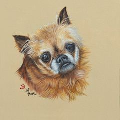 """Buddy"" ... Brussels Griffon, 5x7 Note Cards & 8x10 Matted Print"