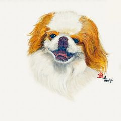 """Martini"" ... Japanese Chin, 5 x 7 Note Cards & 8x10 Matted Print"