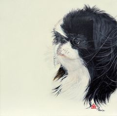 """Akira"" ... Japanese Chin, 5 x 7 Note Cards & 8x10 Matted Print"