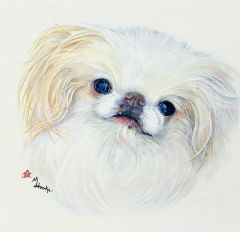 """Clint"" ... Japanese Chin, 5 x 7 Note Cards & Assorted Size Paper & Canvas Prints"