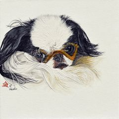 """Scooter"" ... Japanese Chin, 5 x 7 Note Cards & 8x10 Matted Print"