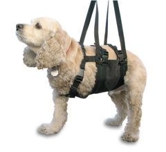 "Small Dog Harness - AST Get-a-Grip Dog Lift Harness, for 22""-27"" Chest"