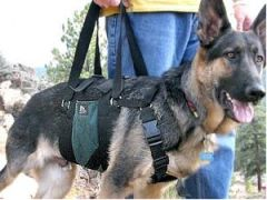 "Medium Dog Harness - AST Get-a-Grip Dog Lift Harness, for 27""-34"" Chest"