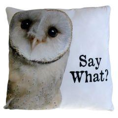 Say What? OWL Cushion