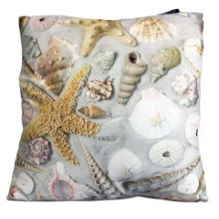 Shells in Sand Cushion