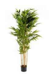 SUPER REALISTIC FOLIAGE Artificial 2m Bamboo Tree