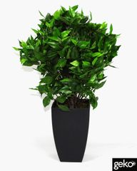 Artificial Plant Medium 65cm Ficus Ball with Black Pot