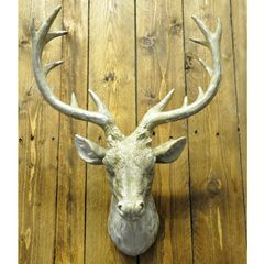 Gold Sparkle Stags Head 22.5 inch