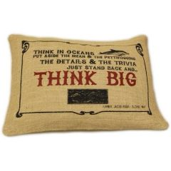 Think Big Cushion