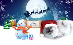 Merry Meowy Christmas
