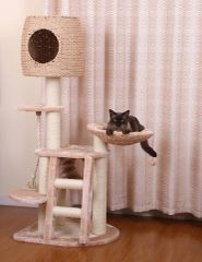 Multi-Level Cat Scratcher Playhouse