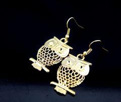 Gold Owl Charm Dangle Earrings