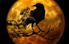Essence of Stryx Spell - Gain Vampire Energy Sexual Allure & Psychic Senses