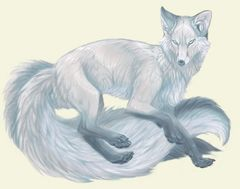 9 Tail Kitsune - Proven Magickal Companion, Protector Who Brings Good Luck!