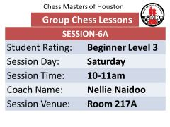 Chess lessons for beginners 10:00am-11:00am