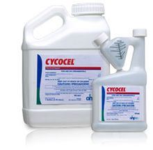 CYCOCEL PLANT GROWTH REGULATOR (Quarts and Gallons)