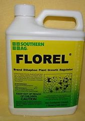 Southern Ag FLOREL Brand Ethephon Plant Growth Regulator-(Quarts and Gallons)