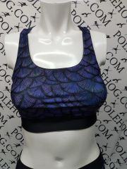 Purple Dragon top.