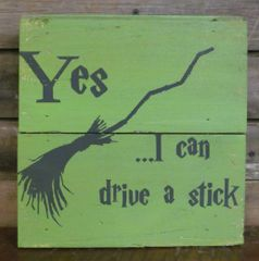 Can Drive A Stick Sign
